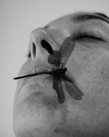 Autoportrait libellule